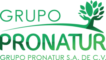 https://grupopronatur.com/wp-content/uploads/2011/05/logo-pronatur-seccion-1-350x200.png